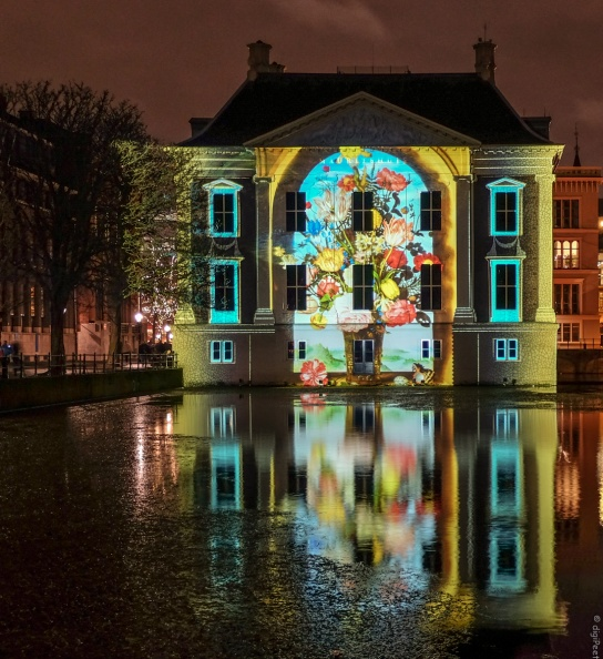 The Hague Highlights 2019-3